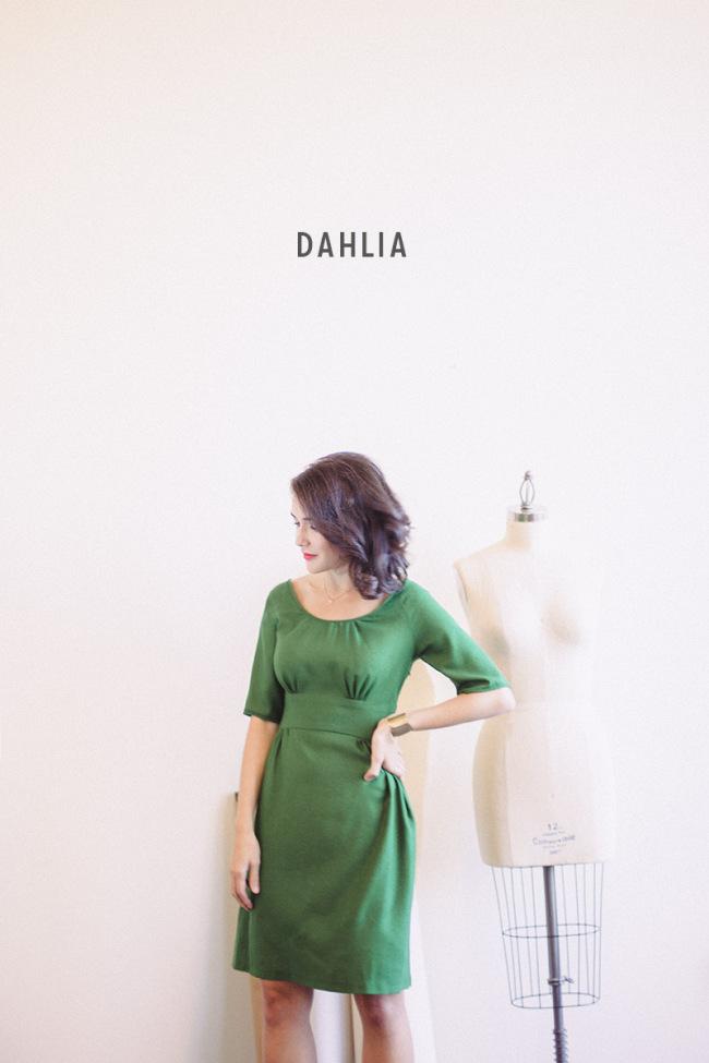 dahlia-title